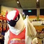 富山グラウジーズ VS西宮ストークス!勝って良かった!!