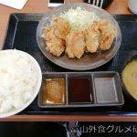 からやま 富山飯野店に行ってきた!からやま定食サックサクでボリュームあるぞ!