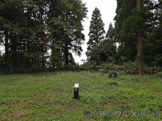 増山城 二の丸