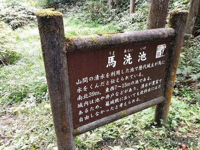 増山城 馬洗池