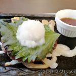 ステーキガスト富山山室店 大根おろしと手ごねハンバーグ サラダバー ドリンクバー食べてきました!