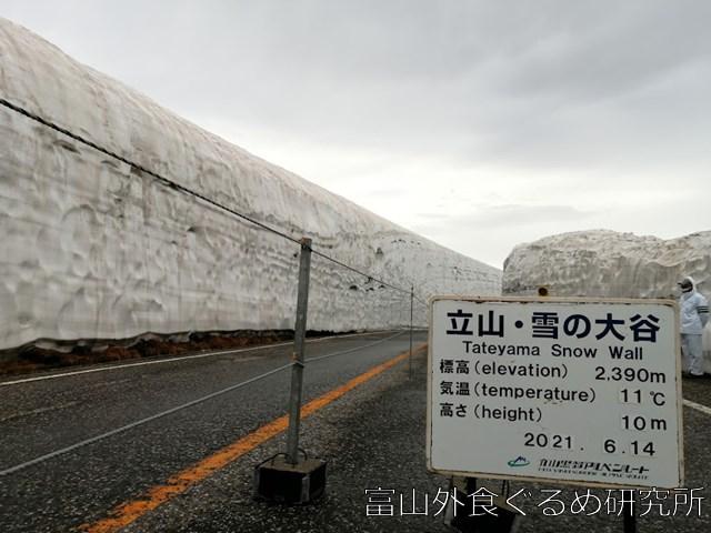 室堂・雪の大谷往復ツアー