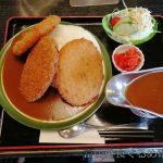 道の駅井波 爆盛りコロッケカレー食べてきた!腹いっぱいで10段ソフトが食べれなくなっちゃった!